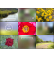 Set of summer camoing blur backgrounds vector image vector image