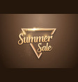 summer sale banner lettering template vector image vector image