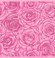 beautiful vintage seamless pattern with pink roses vector image