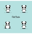 abstract cute pandas vector image
