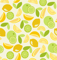 citrus pattern Seamless - vector image vector image
