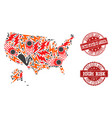 disaster collage of mosaic map of usa and alaska vector image vector image