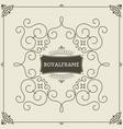 ornament design invitation template vector image