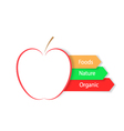 Red apple on a white background Infographics food vector image