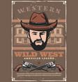 Wild west western bandit saloon and pistol guns