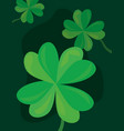 green clovers nature vector image