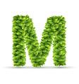 letter m alphabet green leaves vector image vector image