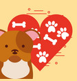 love dog pet vector image vector image