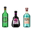 realistic alcohol drinks in a bottle with vector image vector image