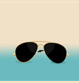 summer is coming concept aviator sunglasses on vector image