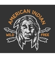 Native american indian head vector image