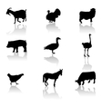 farm animals icons vector image