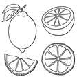 Lime icon set vector image