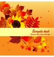 Autumn card with horizontally space for text vector image