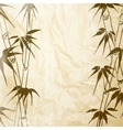 Bamboo with leaves pattern vector image vector image