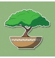 colorful paper bonsai tree vector image vector image
