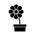 potted flower botanic decoration natural vector image
