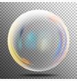 rainbow reflection soap bubble big transparent vector image