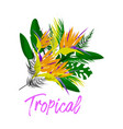 tropical floral collage vector image vector image