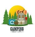 camping outdoor adventure logo vector image vector image