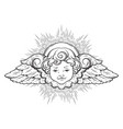cherub cute winged curly smiling baby boy angel vector image vector image