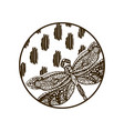 dragonfly hand drawn silhouette round plate design vector image