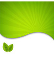 Eco Green Leaves Poster vector image