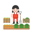 farmer or gardening and carrot crate in flat vector image vector image