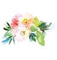 Flowers watercolor vector image vector image