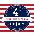 Independens day flag vector image vector image