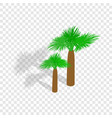 palms isometric icon vector image vector image