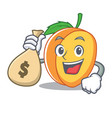 with money bag apricot character cartoon style vector image vector image
