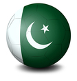 A soccer ball with the flag of Pakistan vector image vector image