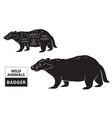 cut of badger set poster butcher diagram - desert vector image