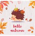 cute hello autumn card vector image vector image