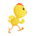 cute little cartoon chick running somewhere vector image vector image