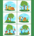 gardening and farming picking apples in garden vector image vector image