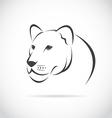Image an female lion head