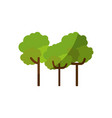 nature trees cartoon vector image vector image