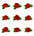 Set of the different roses with leaves isolated on vector image