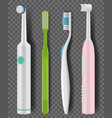 toothbrushes realistic daily morning hygiene vector image vector image