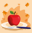 apple fruit design vector image