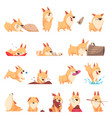 cartoon cute puppy set vector image vector image