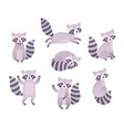 cute raccoons sleeping sitting playing vector image vector image