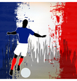 Football France vector image vector image