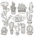 set cacti doodle hand drawn vector image vector image