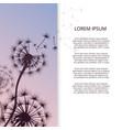 fashion dandelion flower banner design vector image vector image
