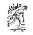 vintage sport skateboarding label vector image vector image