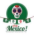viva mexico - skull festival poster vector image