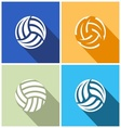 Volleyball balls vector image
